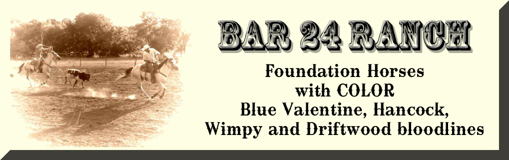 Bar 24 Ranch